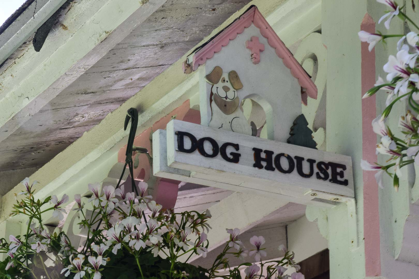Oak_Bluffs_-_The_Dog_House